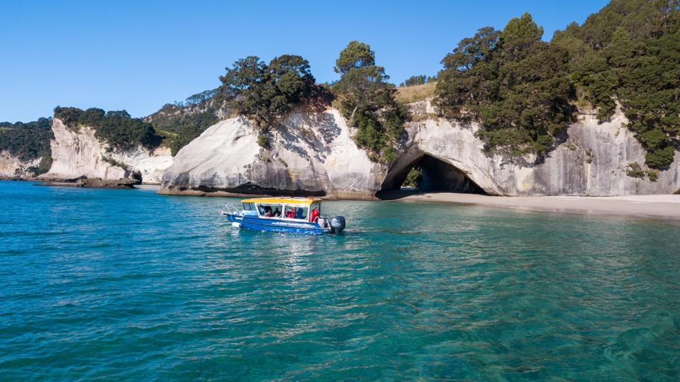 Glass Bottom Boat Whitianga-Weekday Deal