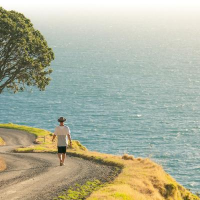 Get Away From It All On The Northern Coast Of The Coromandel