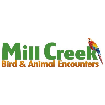 Mill Creek Bird & Campervan Park